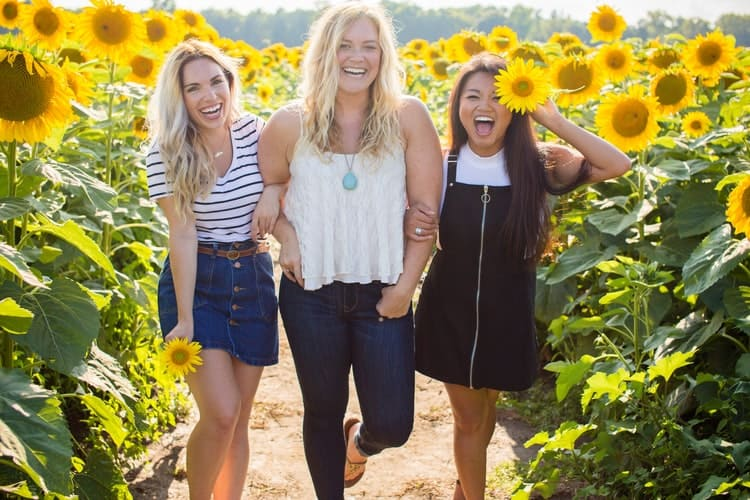 A Guide and Growing Tips To Have A Sunflower Garden